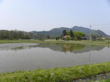 水田.jpg