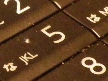 IMGP1552.JPG